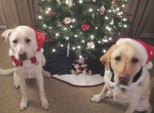 Colby & Bailey Christmas 2009