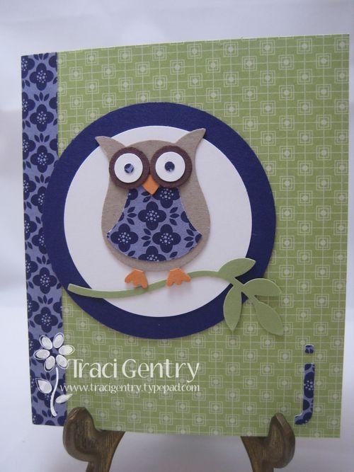 Owl Mini Comp Book wm