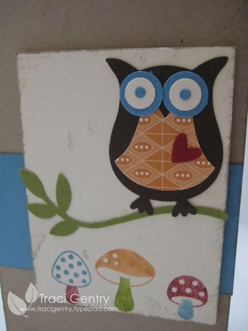 Funky Owl close up wm