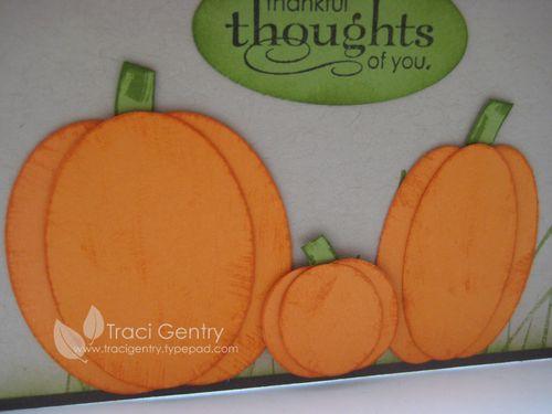 Close up pumpkins wm