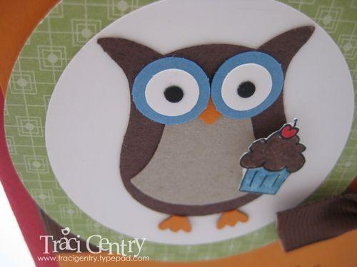 Birthday owl close wm